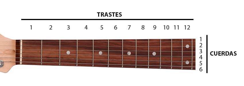 PArtes de una guitarra, trastes y cuerdas